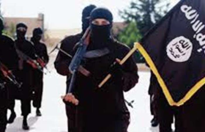 سياسة : أصدر فتاوى بقتل العلماء.. القبض على مفتي داعش بالموصل